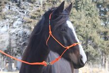 THOMEY NATURAL HORSE TRAINING 4-knot HALTER & 12-foot LEAD ROPE~ NEON ORANGE