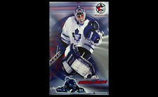 Rare Curtis Joseph TORONTO 2000 Maple Leafs NHL All-Star Superstar Goalie POSTER