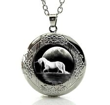 Silver Tone Unicorn Horse Locket Pendant Necklace in a Gift Box Fast Shipping