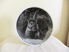 Rabbit Farm/Countryside Plates/Spoons Collectables