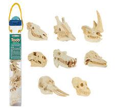 Mammal Skulls Toob ~ Safari Ltd #683504 ~ hippo, elephant, zebra, rhino, lion