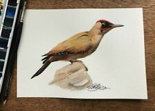 ORIGINAL GREEN WOODPECKER PAINTED BIRD WATERCOLOUR ART (8.3 x 5.8 inch)
