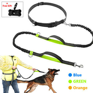 Hands Free Dog Leash Running Jogging Waist Belt Pet Training Elastic Leashes+Bag