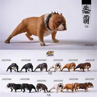 JXK 1/6 American Bully pitbull Dog Pet Figure Animal Model Collector Toys Gfit