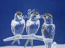 SWAROVSKI  2007 SWALLOWS ON CRYSTAL BRANCH MINT.OWNBOX. COA FEATHERED BEAUTIES.