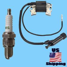Honeywell Ignition Coil & Plug for Hw5500E Hw5500L Hw5500El Hw4000 Hw4000L