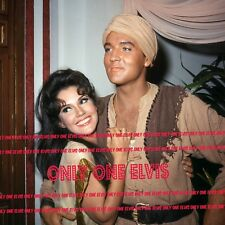 """ELVIS PRESLEY in the Movies 1965 8x10 Photo """"Harum Scarum"""" Mary Ann Mobley 02"""