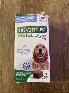 Advantus Flea Soft Chews 37.5 mg Large Dogs 23-110 Pounds 7 Chews Exp.12/2023