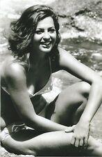WW II   Photo --      Pin Up Girl       # 060