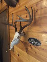 EuroHanger Skull Hanger mount bracket hook bronze or white