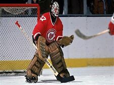 NHL 1976 Gilles Meloche Cleveland Barons Game Action  Color  8 X 10 Photo Pic