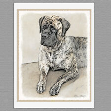 6 English Mastiff Dog Blank Art Note Greeting Cards