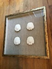 Framed Shadowbox Floating Sand Dollar Nautical Decor Gold Brown White Beach Home