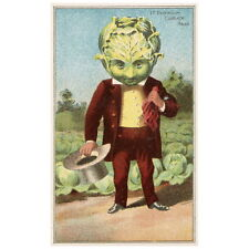 Bufford's Vegetable Cards No. 790-6 Deco FRIDGE MAGNET 1887 Premium Cabbage Head