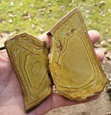 New listing (2) Beautiful • Craig Gulch Picture Jasper Slab - 157 Gr. 3218