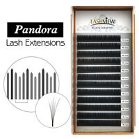 Ultra Natural 3D 6D Volume Eyelash Extensions Individual Lashes 0.07 /0.10mm C