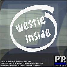 1 x Westie all'interno-Finestra, Auto, Furgone, STICKER, SEGNO, Adesivo, Cane, Pet, su, Board, Terrier