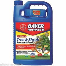 Bayer Advanced Emerald Ash Borer Beetle Tree & Shrub Insect Control 701615A