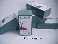1 Individually Pre Packed 'Ideal' Oasis Wet Brick - Floristry Student - Flowers