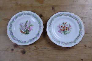 "2 Victorian Copeland Spode Decorative 9"" Plates Kite Registration Mark 1 a/f"
