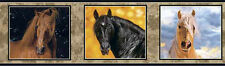 3 BORDERS Beautiful Horse Portraits Wallpaper Border