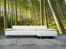 Green Bamboo Forest  Wall Mural Photo Wallpaper GIANT WALL DECOR Paper Poster