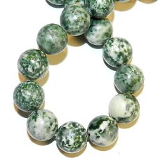"""GR374f Green Tree Agate Large 12mm Round Natural Gemstone Beads 16"""""""