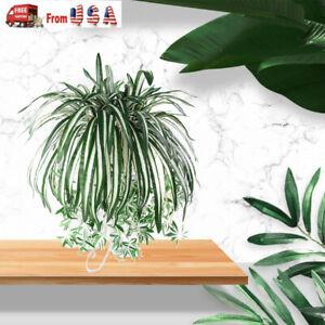 Artificial Silk Spider Plant Chlorophytum Comosum Greenery Office Home Decor