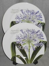 Set (2) Baum Brothers AGAPANTHUS PATTERN Dinner Plates GREAT GRAPHICS!