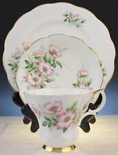 Royal Albert Friendship Series Wild Rose Porcelain Teacup Saucer Salad Plate Set