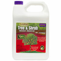 Annual Tree & Shrub Insect Control Concentrate 1 Gal Systemic Insecticide Drench