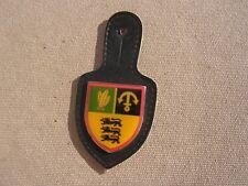 insigne  allemand de regiment  parachutiste