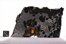 Seymchan pallasite Meteorite part slice 75 grams