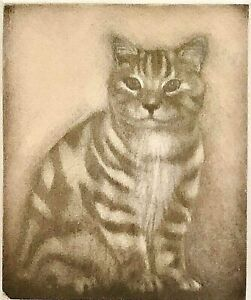 Original Signed Limited Edition Etching of Tabby Cat By Crees Framed & Matted