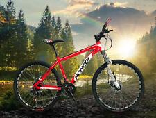 "26"" Adult Mountain Bike Disc Brakes Full Suspension Road Bicycle MTB Frames"