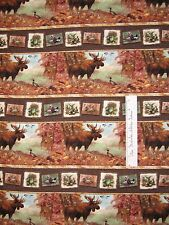 Mountain Woods Fabric - Giordano Studio Stripe Moose - Spectrix YARD