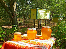 Organic Raw Sunflower Honey