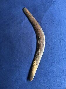 Old Pintupi Aboriginal Boomerang. Western Desert.