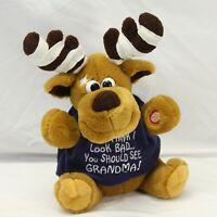 Dan Dee Singing Animated Reindeer Grandma Got Run Over By A Reindeer Christmas