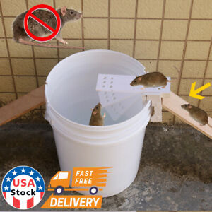 Walk The Plank Mouse Trap Rodent Bucket Trap Rat Auto Reset Mice Catcher Humane