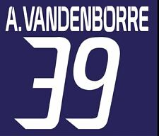 Vanderborre #39 Anderlecht 2013-2014 Home Football Nameset for shirt