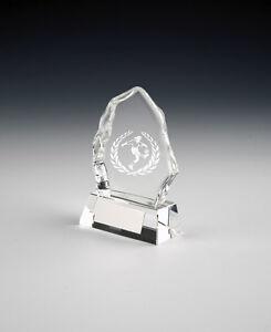 5 x Ladies 'Iceberg' Football Awards (RRP £9.95 each) postage + engraving free