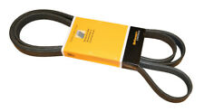 CRP PK060950 Serpentine Belt