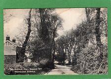 Avenue Hull Bridge Road Woodham Ferrers Ferris Nr Chelmsford pc 1909 Ref K384