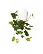 Boskke Sky Planter Recycled, Medium - off-White
