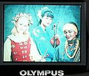 LCD Display Screen For OLYMPUS C-2000