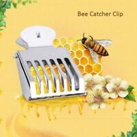 1PC  Beekeeping Equipment Stainless steel Cage For Queen Bees Hot S Lr