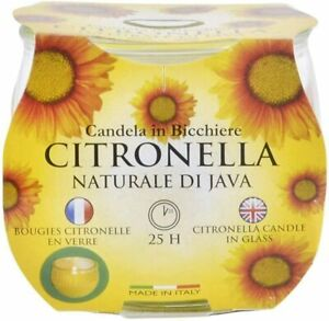 Price's Citronella Candles Jar Garden Outdoor Party Barbecue Insect Repellent