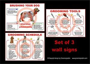 DOG GROOMING SCHEDULE & BRUSH GUIDE WALL SIGNS stationery by GROOMERGRAPHIX
