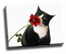 Tuxedo Cat & Rose Giclee Canvas Picture Poster Art